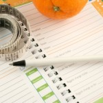 weight-watchers-food-journal