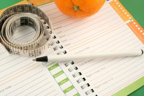 weight-watchers-food-journal